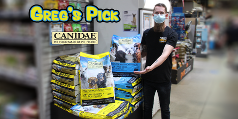 canidae gregs pick all life stages