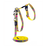 Rogz ReflectoCat Harness & Leash Set - X-Small | Pisces Pets