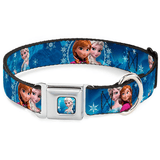 Buckle-Down Frozen Leash / Collar | Pisces Pets