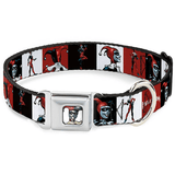 Buckle-Down Harley Quinn Leash / Collar | Pisces Pets