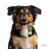 My Family Happy Pet ID Tag | Pisces Pets