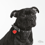 My Family Big Heart Reflective Pet ID Tag | Pisces Pets