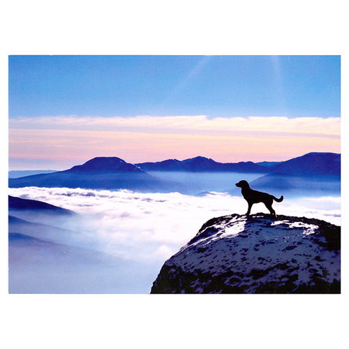 Dog On Mountain Pet Sympathy Card | Pisces Pets