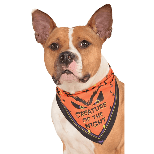 Rubie's Creature of the Night Bandana - M/L