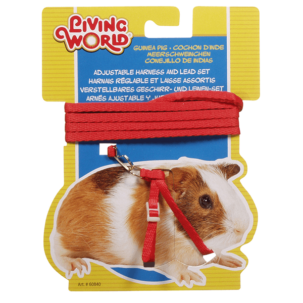 Living World Figure 8 Harness and Lead Set for Guinea Pigs | Pisces Pets