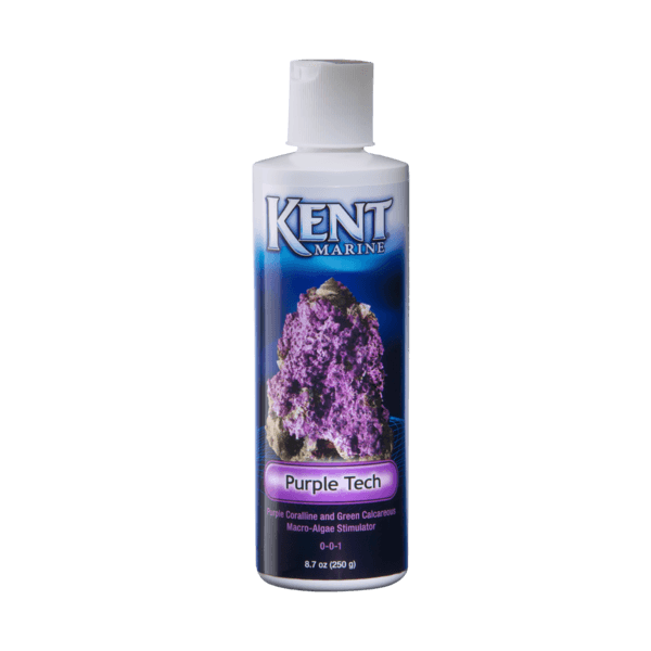 Kent Marine Purple Tech | Pisces Pet