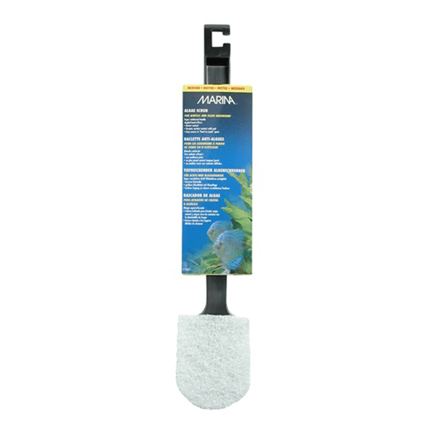 Marina Algae Scrubber with Plastic Handle - Medium | Pisces Pets