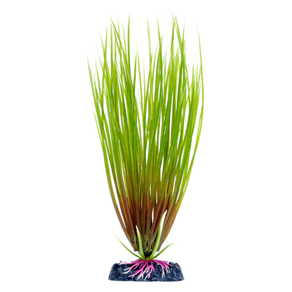 Penn Plax Sinkers Large Hair Grass | Pisces Pets