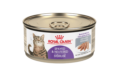 Royal Canin Cat Spayed/ Neutered Loaf 165 g | Pisces Pets