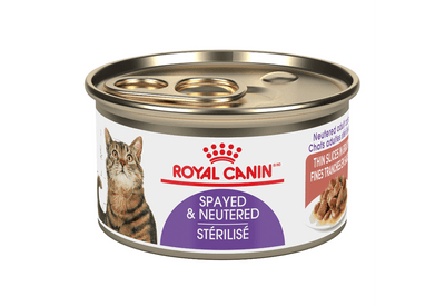 Royal Canin Spayed & Neutered Adult Cat Thin Slices in Gravy 85 g | Pisces Pets