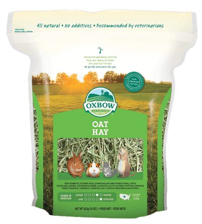 Oxbow Oat Hay - 425g | Pisces Pets