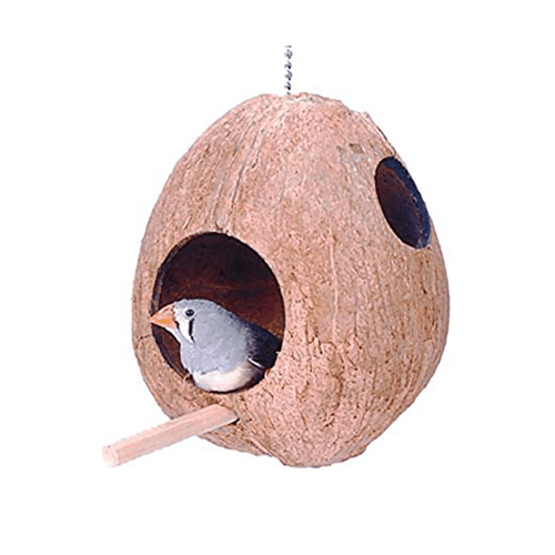 Penn Plax Coconut Shell Bird House for Finches | Pisces Pets