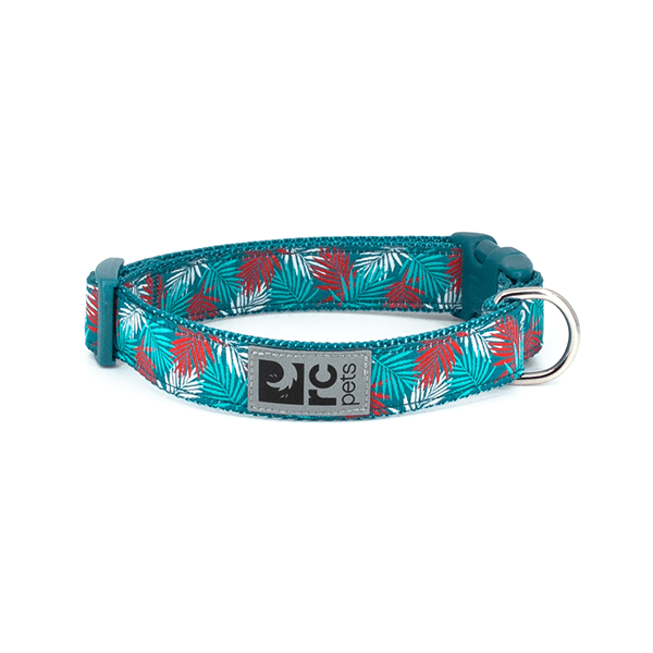 RC Pets Maldives Clip Collar - Available in 4 Sizes | Pisces Pets