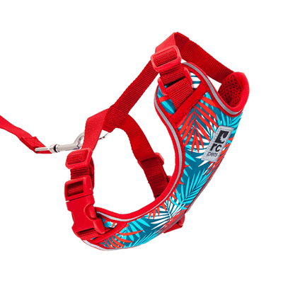 RC Pets Maldives Adventure Kitty Harness - Available in 3 Sizes | Pisces Pets