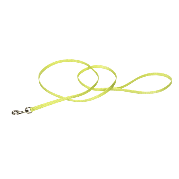 "Coastal Pet Nylon Leash Lime - 3/8"" x 4' 