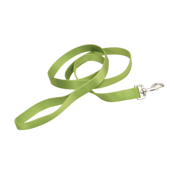 "Coastal Pet Nylon Leash Palm Green - 3/4"" x 4' 