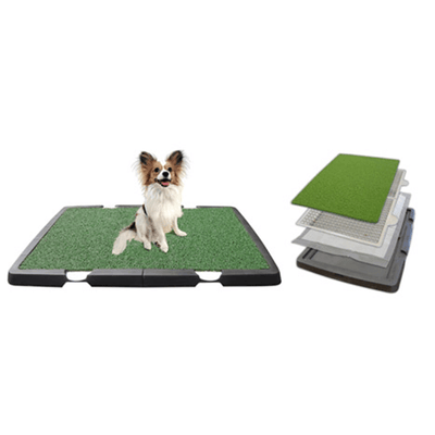 Dog Training Aids