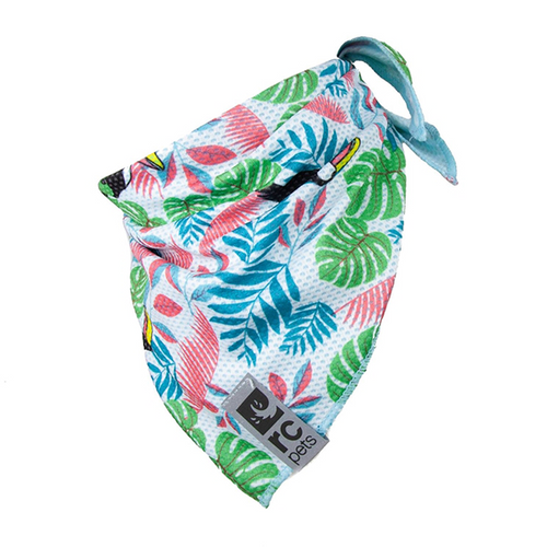 RC Pets Toucan Zephyr Cooling Bandana - Available in 3 Sizes | Pisces Pets
