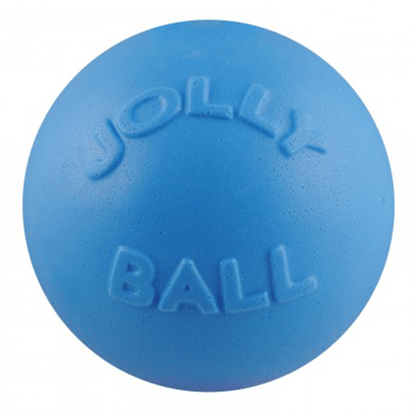Jolly Pets Blue Bounce-N-Play Ball - Medium | Pisces Pets