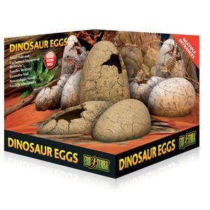 Exo Terra Dinosaur Eggs Fossil Hide-Out | Pisces Pets