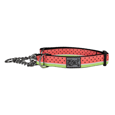RC Pets Watermelon Training Collar - Available in Multiple Sizes | Pisces Pets
