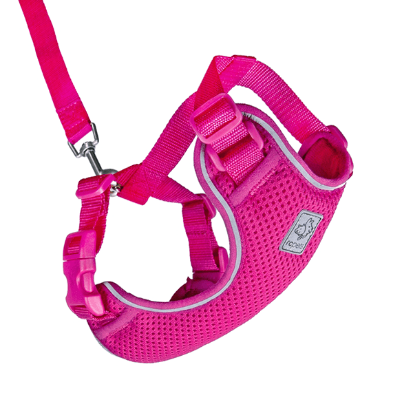 RC Pets Raspberry Adventure Kitty Harness - Available in 3 Sizes | Pisces Pets