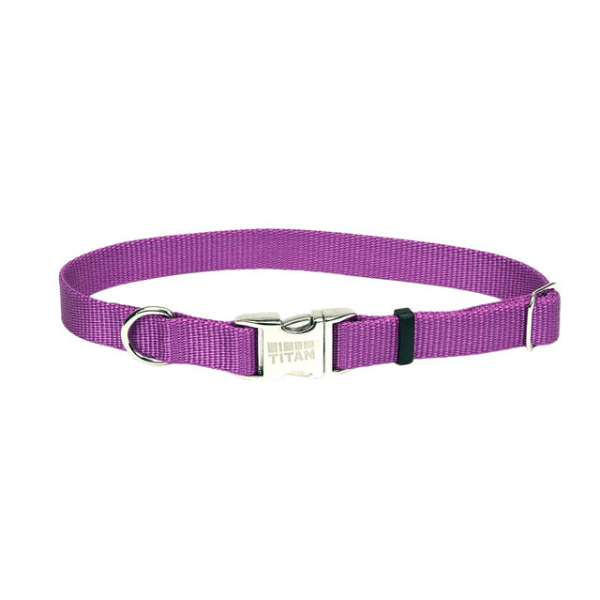 Coastal Pet Orchid Adjustable Collar with Titan Buckle - Available in 3 Sizes | Pisces Pets