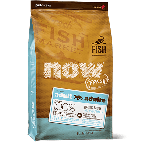NOW Adult Fish | Pisces Pets