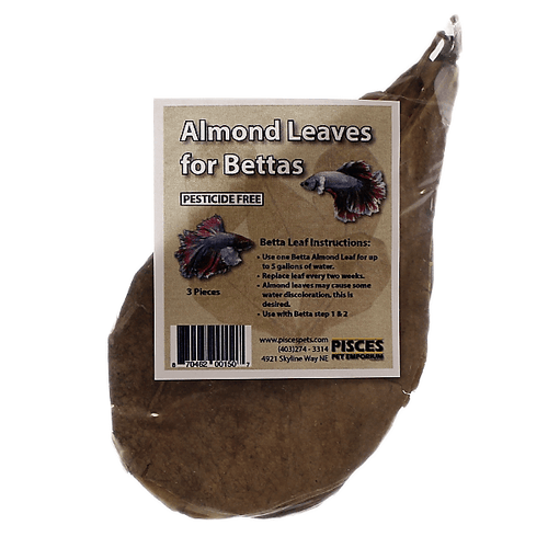 Pisces Almond Leaves for Bettas - Medium | Pisces Pets