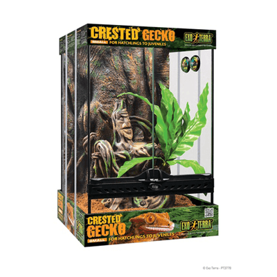 "Exo Terra Small Crested Gecko Habitat Kit - 12"" x 12"" x  17.7"" 