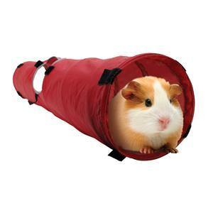 Living World Small Animal Tunnel - Medium | Pisces Pets