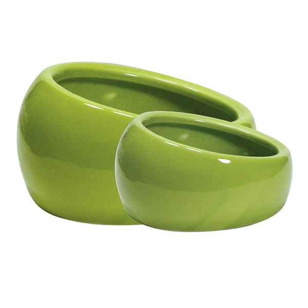 Living World Ergonomic Ceramic Dishes | Pisces Pets