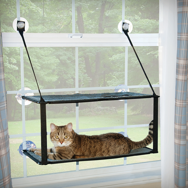 Double Stack EZ Window Mount Kitty Sill | Pisces Pets