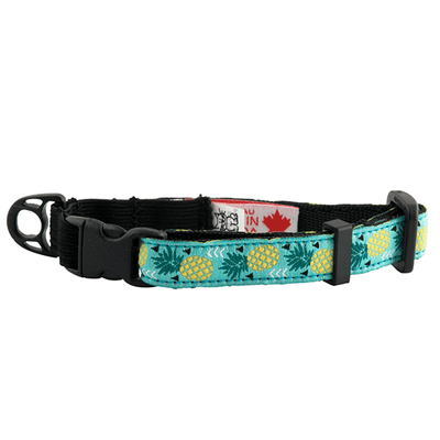 RC Pets Pineapple Parade Kitty Clip Collar | Pisces Pets