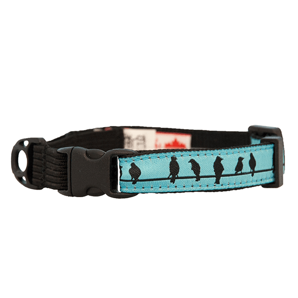 RC Pets Birds on a Wire Kitty Clip Collar | Pisces Pets