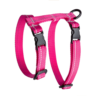 RC Pets Raspberry Primary Kittty Harness - Medium | Pisces Pets