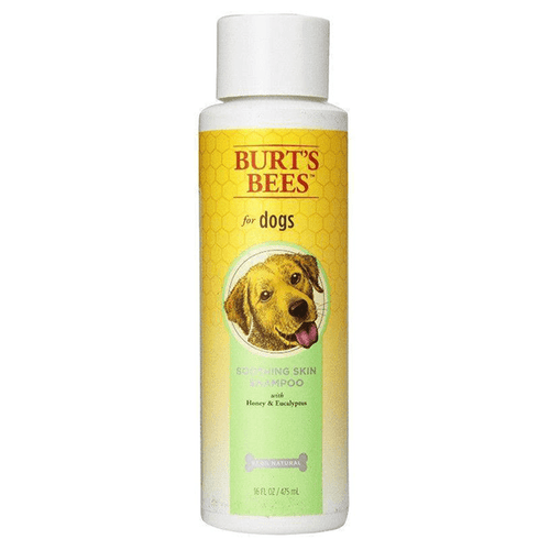 Burt's Bees Soothing Skin Shampoo with Honey and Eucalyptus - 475mL | Pisces Pets