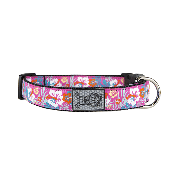 RC Pets Hibiscus Clip Collar - Multiple Sizes Available | Pisces Pets
