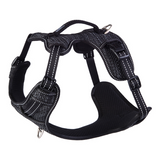 Rogz Fanbelt Large Explore Harness - Available in 3 Colours | Pisces Pets