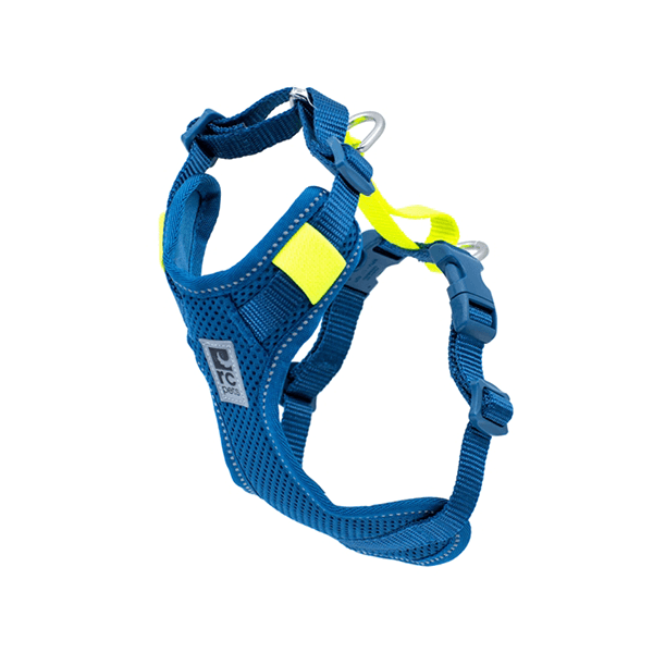 RC Pets Blue Moto Control Harness - Available in Multiple Sizes | Pisces Pets