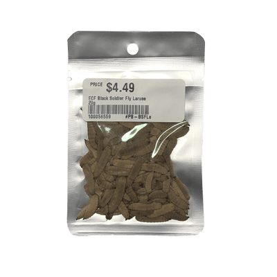 Eco Fresh Black Soldier Fly Larvae - 20 g | Pisces Pets
