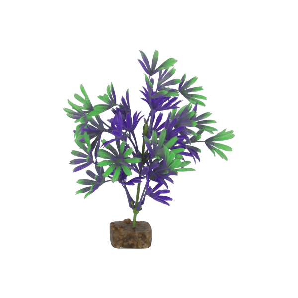 Tetra GloFish Medium Purple/Green Plant | Pisces Pets