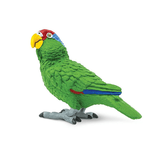 Safari Ltd. Green-Cheeked Amazon Parrot | Pisces Pets