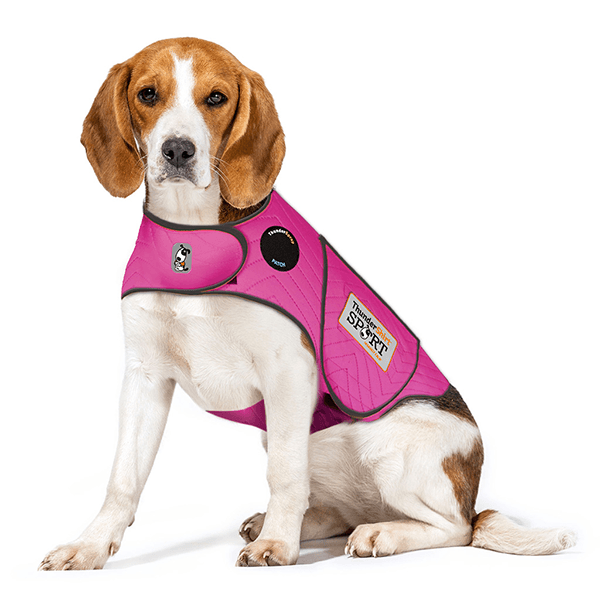 ThunderShirt Sport Fuchsia - Available in Multiple Sizes | Pisces Pets