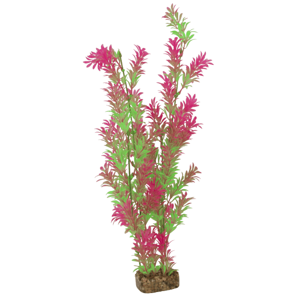 Tetra GloFish X-Large Green/Pink Plant | Pisces Pets