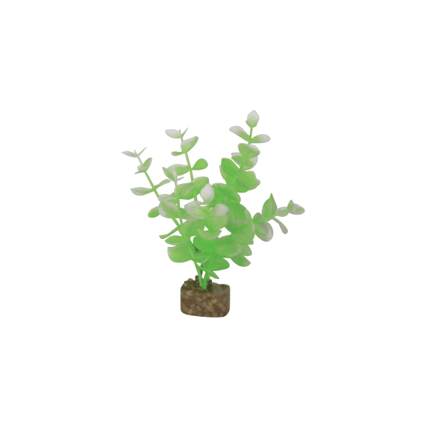Tetra GloFish Small Green/White Plant | Pisces Pets