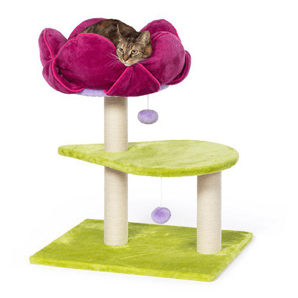 Prevue Hendryx Flower Power Cat Tree | Pisces Pets