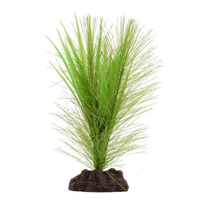 Fluval Aqualife Plant Scapes Green Parrots Feather Plant - 5 in | Pisces Pets