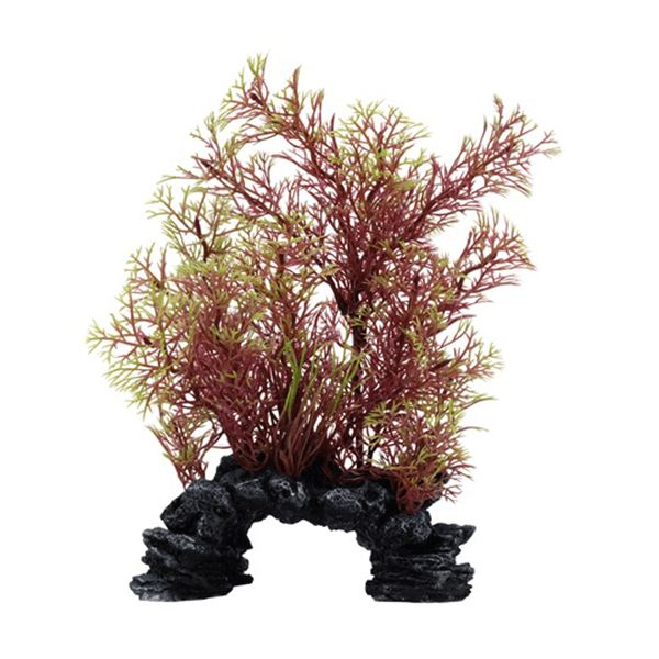 Fluval Aqualife Deco Scapes Red/Green Foxtail Mix - 6-8 in | Pisces Pets