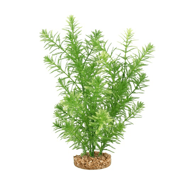 Fluval Aqualife Plant Scapes Green Myriophyllum - 10 in | Pisces Pets